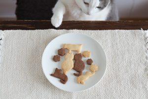 洋菓子と猫