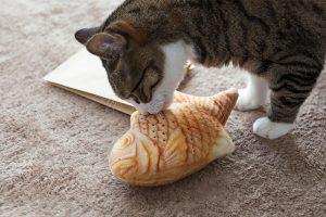 猫のけりぐるみ(たき焼き)