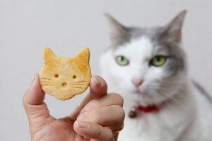 猫型クッキー
