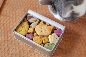 猫型クッキー詰め合わせ