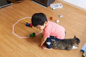 猫と子供で遊ぶ(猫転送装置)