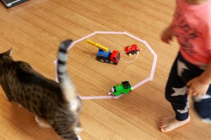 猫と子供が追いかけっこ