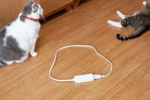 猫転送装置(延長コードの場合)
