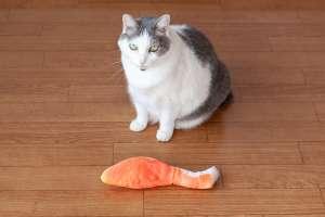 鮭の蹴りぐるみ(猫用)