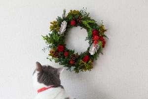 猫がいても飾れる花