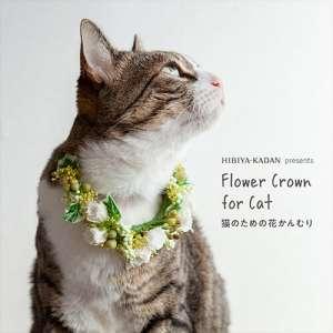 花の首輪をつける猫