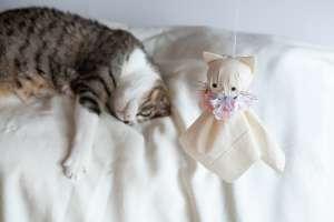 お花で飾ったテルテル坊主(猫)